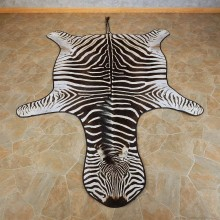African Zebra Full-Size Rug For Sale #15704 @ The Taxidermy Store
