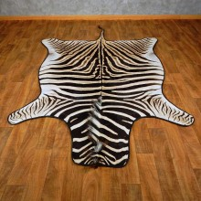 African Zebra Rug Mount For Sale #15268 @ The Taxidermy Store