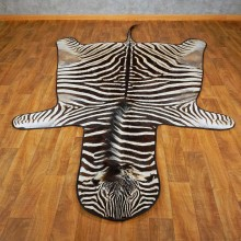 African Zebra Rug Mount For Sale #15269 @ The Taxidermy Store