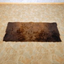 Bison (Buffalo) Taxidermy Finished Rug For Sale