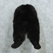 Black Bear Butt Mount #13739 For Sale @ The Taxidermy Store