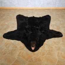 Black Bear Full Size Rug For Sale #14601 @ The Taxidermy Store