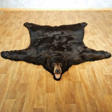 Black Bear Full-Size Taxidermy Rug #13381 For Sale @ The Taxidermy Store