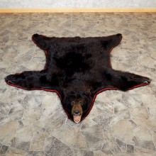 Black Bear Full Size Rug For 19316 The Taxidermy