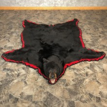 Black Bear Full-Size Rug For Sale #20083 @ The Taxidermy Store