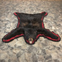 Black Bear Full-Size Rug For Sale #20086 @ The Taxidermy Store