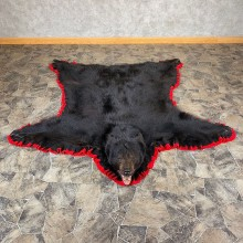 Black Bear Full-Size Rug For Sale #21166 @ The Taxidermy Store