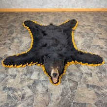 Black Bear Full-Size Rug For Sale #21169 @ The Taxidermy Store
