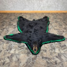 Black Bear Full-Size Rug For Sale #21175 @ The Taxidermy Store