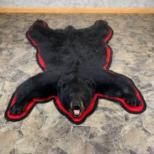 Black Bear Full-Size Rug For Sale #21176 @ The Taxidermy Store