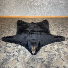 Black Bear Full-Size Rug For Sale #21959 @ The Taxidermy Store