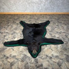 Black Bear Full-Size Rug For Sale #22110 @ The Taxidermy Store