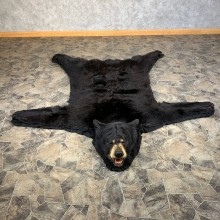 Black Bear Full-Size Rug For Sale #22114 @ The Taxidermy Store