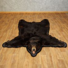 Black Bear Full-Size Rug For Sale #17256 @ The Taxidermy Store