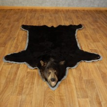Black Bear Full-Size Rug For Sale #17258 @ The Taxidermy Store