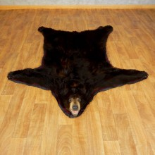 Black Bear Full-Size Rug For Sale #17261 @ The Taxidermy Store