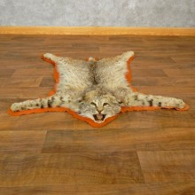 Bobcat Taxidermy Rug Mount For Sale #17853 @ The Taxidermy Store