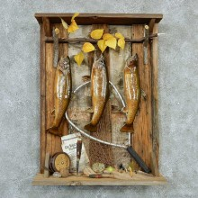 Captain's Classic Brook Trout Display Taxidermy Mount #13298 For Sale @ The Taxidermy Store