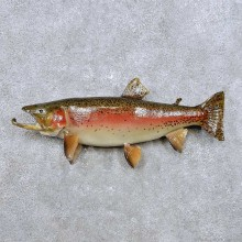 Brook Trout Fish Mount For Sale #14362 @ The Taxidermy Store