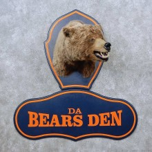 Da Bears Den Shoulder Mount For Sale #15612 @ The Taxidermy Store