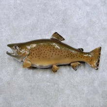Brown Trout Fish Mount For Sale #14369 @ The Taxidermy Store