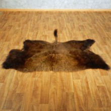 American Buffalo Throw Rug Taxidermy Mount #13374 For Sale @ The Taxidermy Store