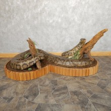 Burmese Python Snake Taxidermy Mount For Sale