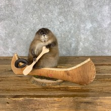 Canoeing Muskrat Novelty Mount #22601 @ The Taxidermy Store