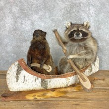 Canoeing Pals Novelty Mount For Sale #22478 @ The Taxidermy Store