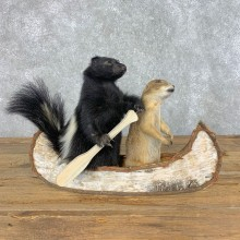 Canoeing Prairie Dog and Skunk Novelty Mount For Sale #21490 @ The Taxidermy Store