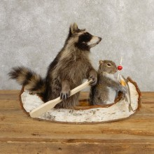 Canoeing Raccoon And Fishing Squirrel Novelty Mount For Sale #20748 @ The Taxidermy Store