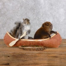 Canoeing Squirrel & Beaver Novelty Taxidermy Mount For Sale