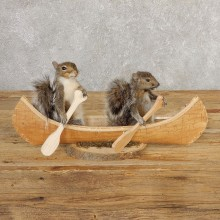 Canoeing Squirrels Novelty Mount For Sale #20750 @ The Taxidermy Store