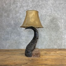 Cape Buffalo Horn Lamp For Sale #21282 @ The Taxidermy Store