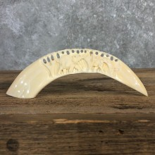 Carved Hippopotamus Tooth For Sale #19970 @ The Taxidermy Store