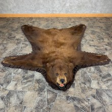 Chocolate Phase Black Bear Full-Size Rug For Sale #21167 @ The Taxidermy Store