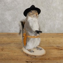 Cowboy Squirrel Novelty Mount For Sale #20720 @ The Taxidermy Store