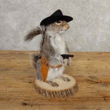Cowboy Squirrel Novelty Mount For Sale #20724 @ The Taxidermy Store