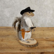 Cowboy Squirrel Novelty Mount For Sale #20725 @ The Taxidermy Store