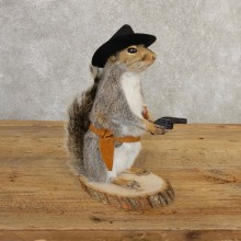 Cowboy Squirrel Novelty Mount For Sale #20726 @ The Taxidermy Store