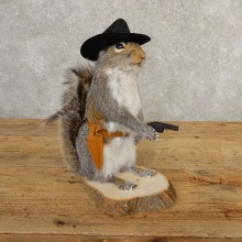 Cowboy Squirrel Novelty Mount For Sale #20735 @ The Taxidermy Store