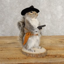Cowboy Squirrel Novelty Mount For Sale #21021 @ The Taxidermy Store