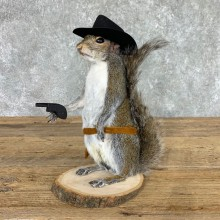 Cowboy Squirrel Novelty Mount For Sale #22433 @ The Taxidermy Store