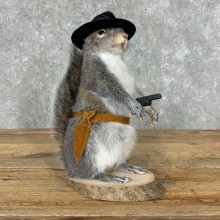 Cowboy Squirrel Novelty Mount For Sale #23047 @ The Taxidermy Store