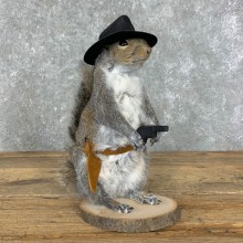 Cowboy Squirrel Novelty Mount For Sale #23048 @ The Taxidermy Store