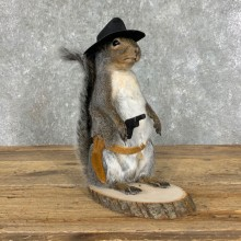 Cowboy Squirrel Novelty Mount For Sale #23050 @ The Taxidermy Store