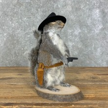 Cowboy Squirrel Novelty Mount For Sale #23052 @ The Taxidermy Store