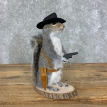 Cowboy Squirrel Novelty Mount For Sale #23053 @ The Taxidermy Store