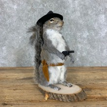 Cowboy Squirrel Novelty Mount For Sale #23055 @ The Taxidermy Store