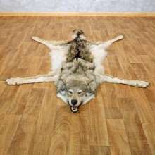 Alaskan Wolf Full Size Rug For Sale #14584 @ The Taxidermy Store